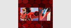 Labels for RID Windblade