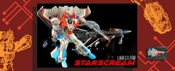 Labels for Generations Starscream
