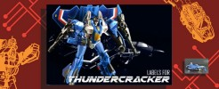 Labels for Generations Thundercracker