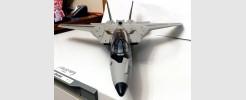 """Skystriker """"Robotech VF-1S Veritech Skull Leader"""""""